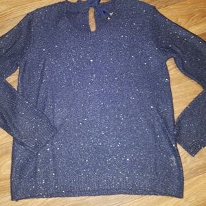 A.N.A. Sequin Sweater
